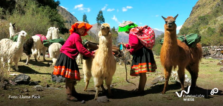 emprendimientos sociales peruanos